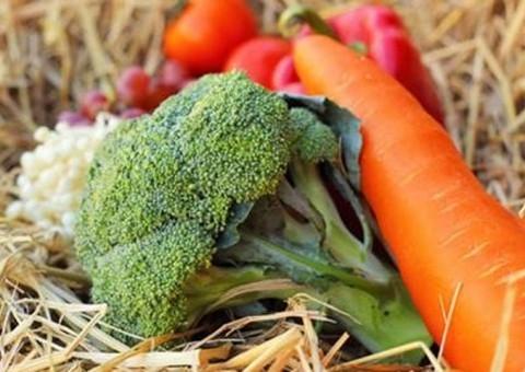 China produz e consome vegetais produzidos em vinil house