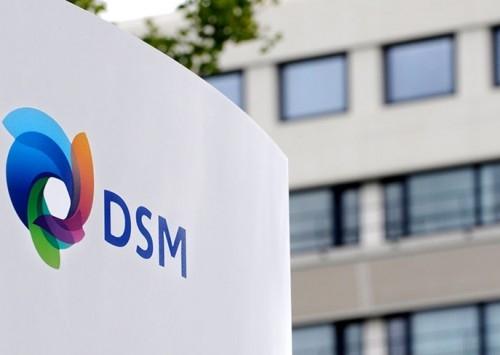 DSM cresce em vendas globais e na AL