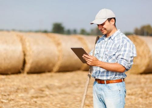 Sinal fraco de internet no campo limita tecnologia agrícola no Brasil
