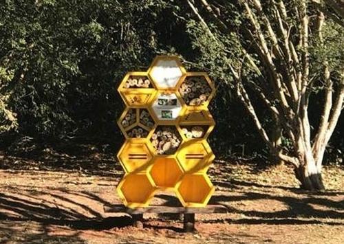 Fazenda em Tabapuã (SP) inaugura primeiro 'hotel' para abelhas do noroeste paulista