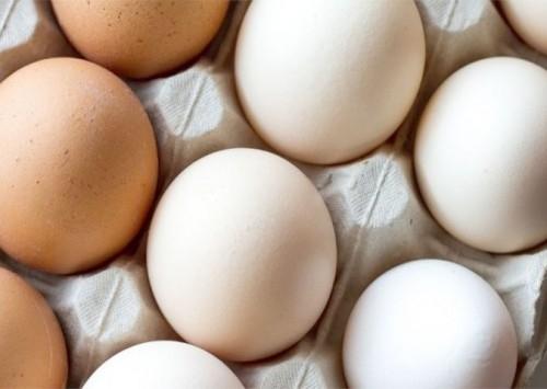 Quarentena e quaresma ampliam demanda por ovos; custos de produção aumentam