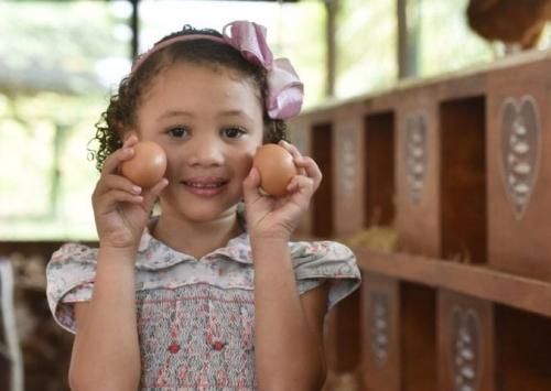 Na pandemia, Mantiqueira registrou aumento de 30% na demanda por ovos