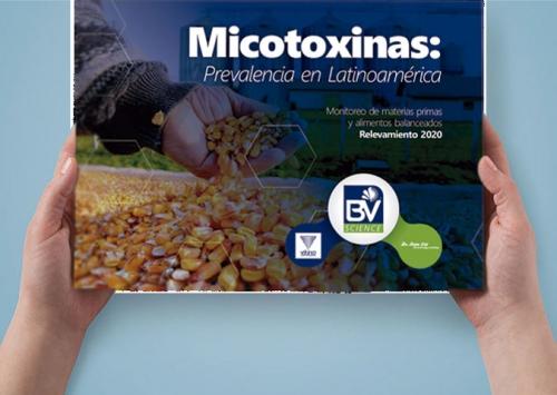 Vetanco lança e-book sobre micotoxinas na América Latina em 2020