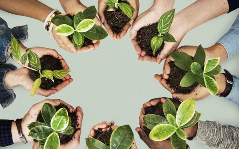Cooperativas crescem e colaboram com o avanço do agronegócio