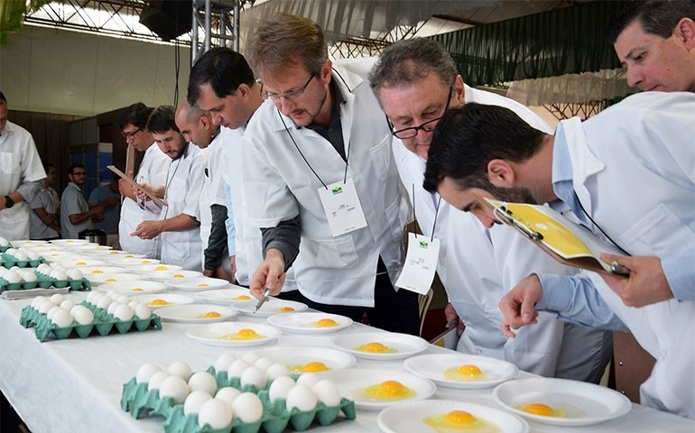 Concursos de Qualidade de Ovos acontecem na 5ª. Favesu