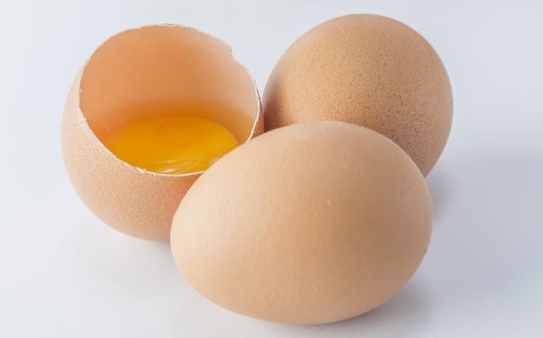 Semana do Ovo começa neste dia 7/10, recheada de atrações pelo Brasil
