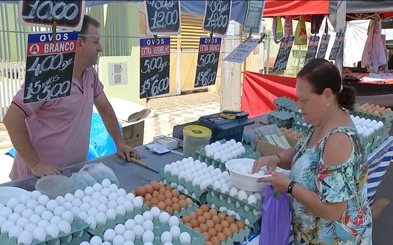 Consumo de ovos deve chegar a 230 per capita, divulga o Jornal Nacional