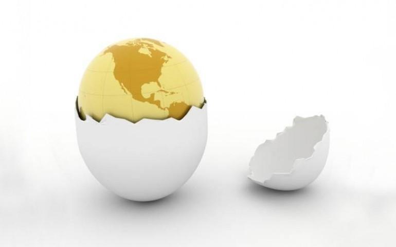 Exportação de ovos cresce de forma expressiva em 2021